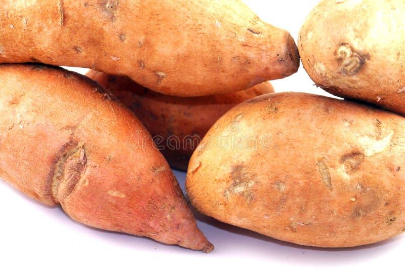 Sweet Potatoes. On a white studio background royalty free stock photos