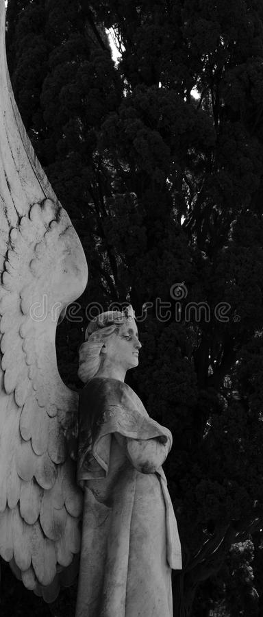 Sweet protecting angel part 2. Shot in black and white detail of the sculpture on the facade of this historic building cemetery representing some characters / stock photos