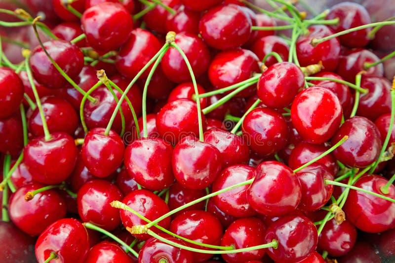 Download Sweet red cherries stock photo. Image of meal, macro - 33052560