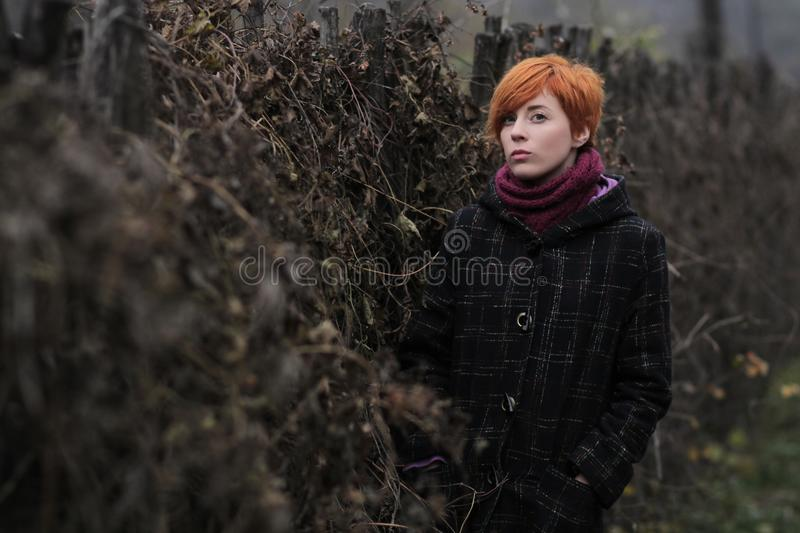 Sweet red-haired girl in a black coat and purple knitted scarf is standing by the fence overgrown with grapevine or ivy. Girl or woman on a background of royalty free stock images