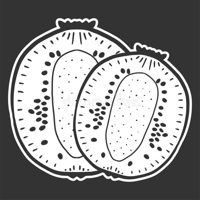 Sweet ripe slice of kiwi. Vector concept in doodle and sketch style. Hand drawn illustration for printing on T-shirts, postcards, fruit, fresh, food, design royalty free illustration