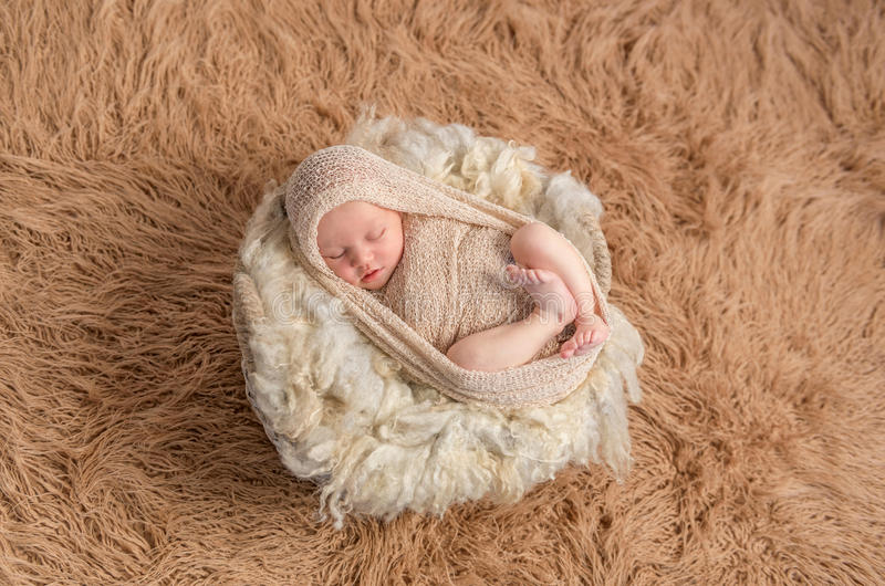 Sweet sleeping newborn on fluffy terry blanket stock images