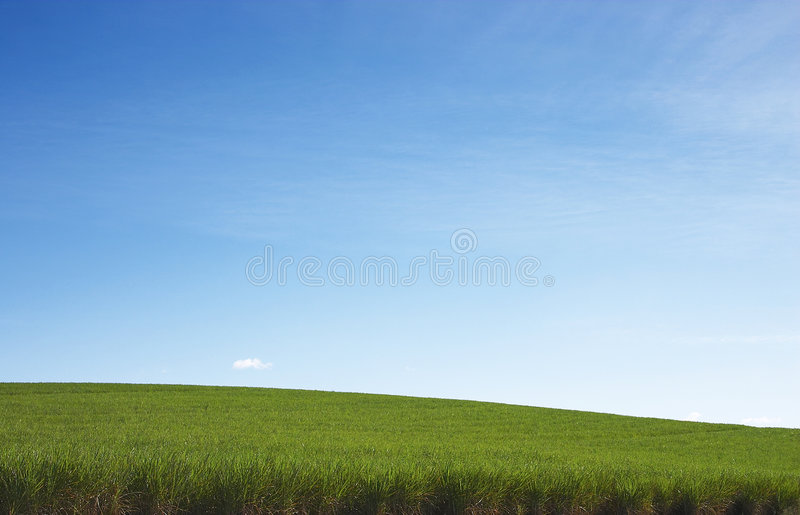 Sweet Slopes royalty free stock photo