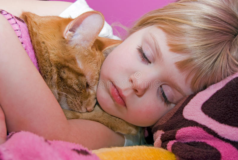 Sweet Slumber Royalty Free Stock Image