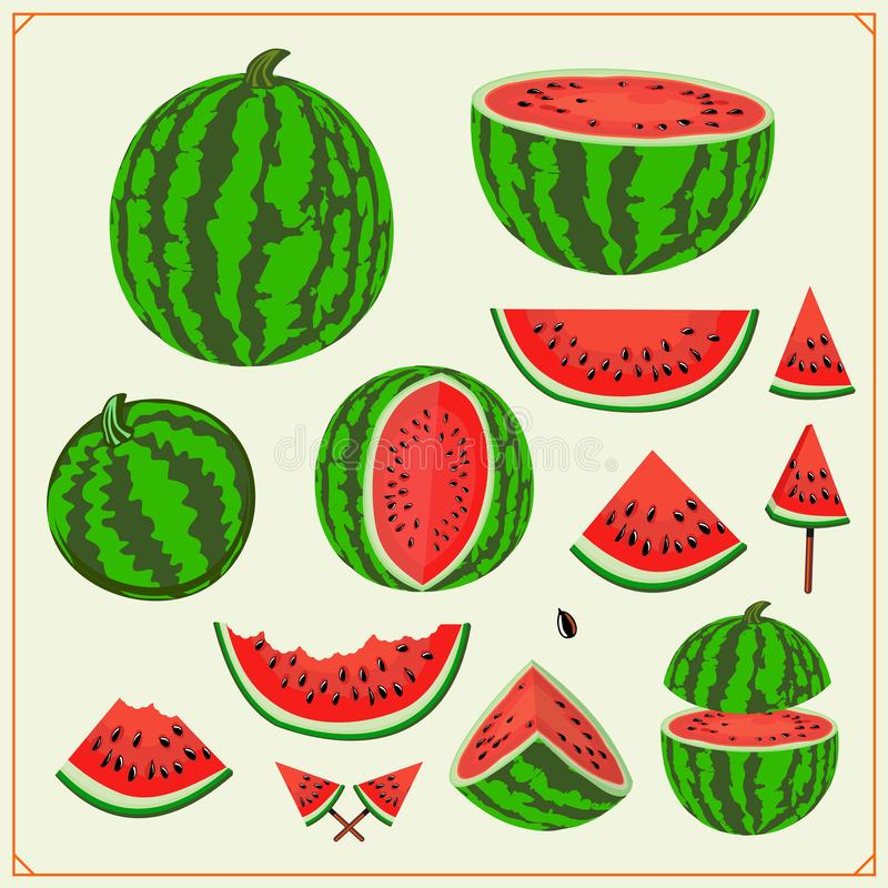 Sweet summer set. Whole watermelons and juicy watermelon slices. Summer poster design elements. vector illustration