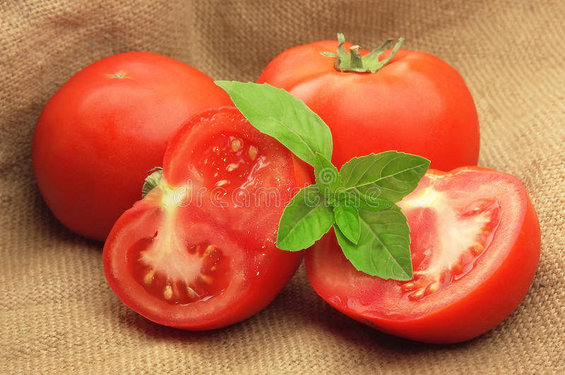 Download Sweet Tomatoes With Basil  In Linen Bag Stock Image - Image: 19943467