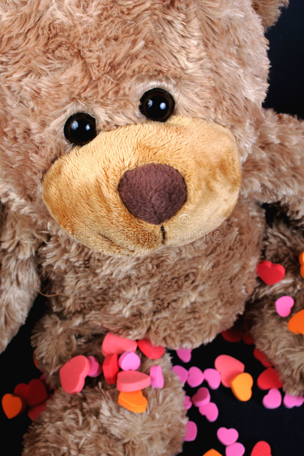 Free Sweet Valentine Bear Stock Photos - 4035803