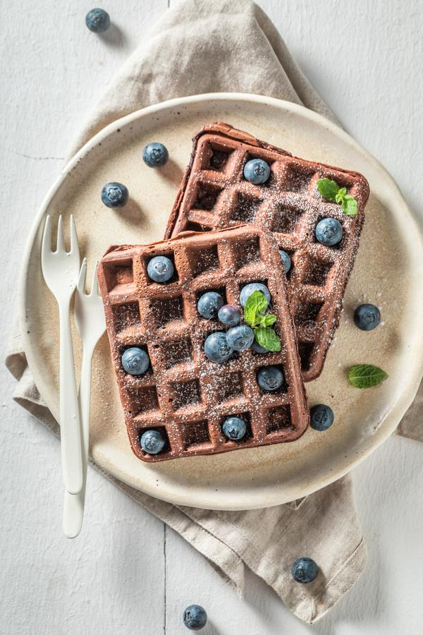 Sweet waffles with dark chocolate royalty free stock images