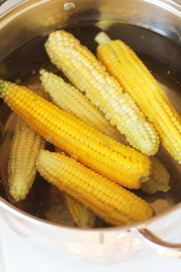 Download Sweetcorn stock image. Image of sweetcorn, stew, crop - 21162037