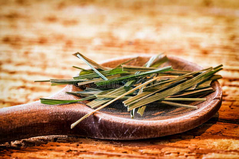 Sweetgrass royalty free stock photography