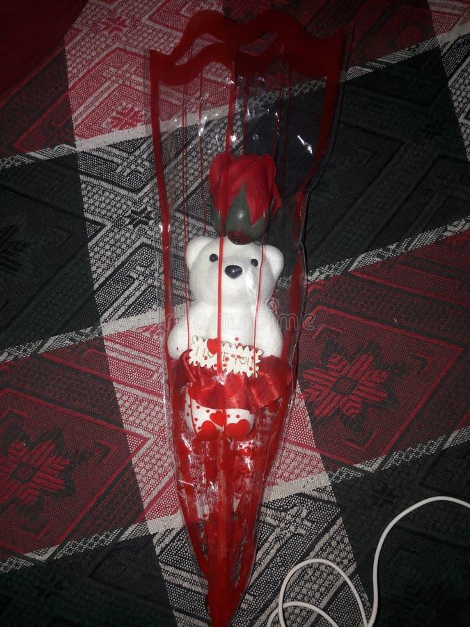 sweets bear zdjęcie royalty free