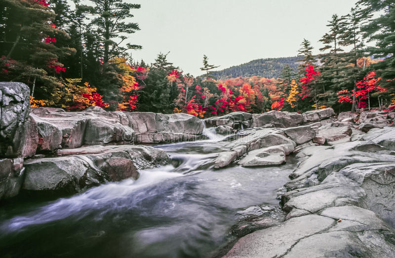 Swift river in autumn in White Mountains royalty free stock photo