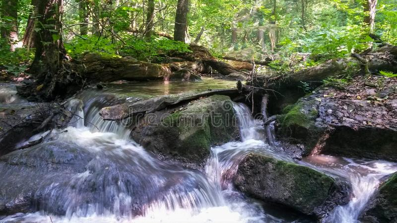 Swift river with a waterfall in a dense summer forest. Threshold on the forest river royalty free stock photo
