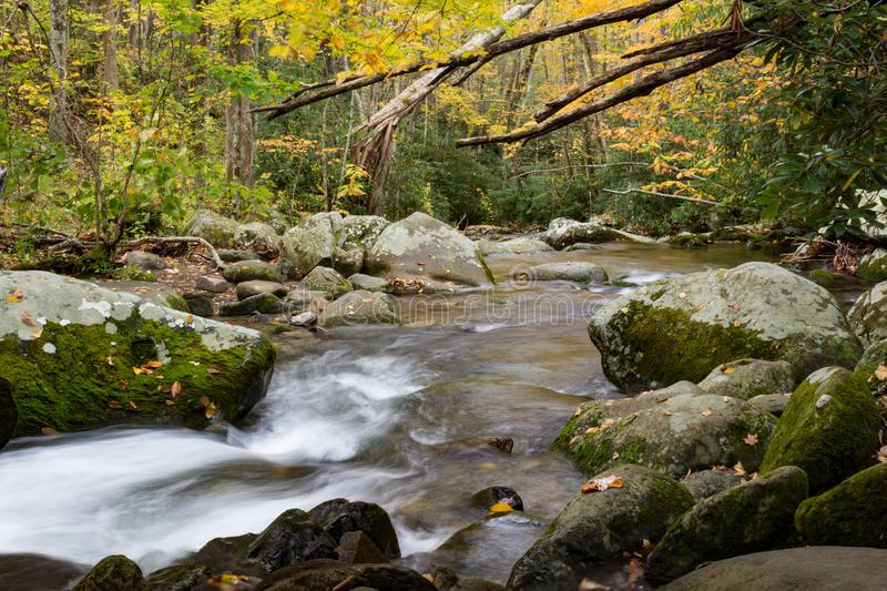 Swift water from a mountain stream flowing around moss covered boulders in autumn, fall leaves stock photography