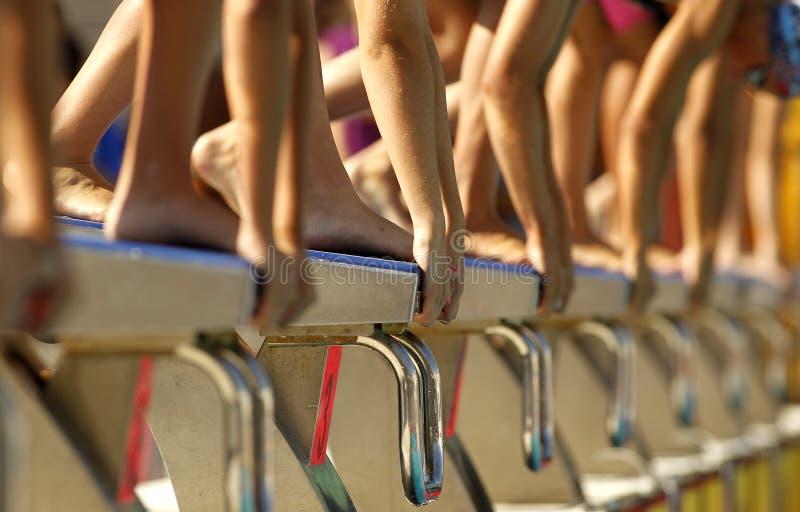 Swim competition stock photos