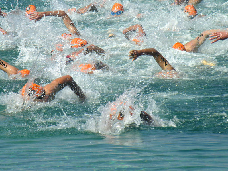 Swim, der am Triathlon läuft lizenzfreie stockfotos