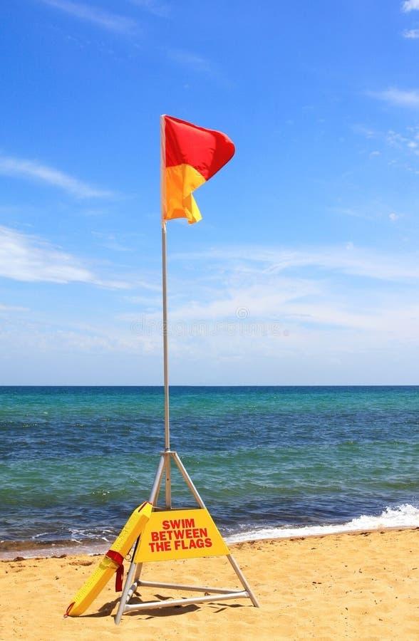 Swim Between The Flags Stock Image