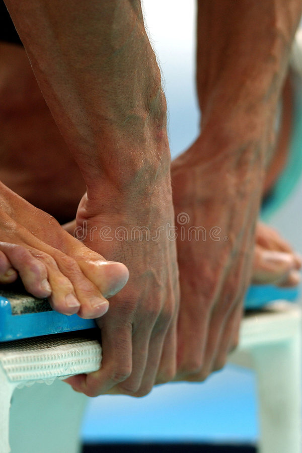 Swim Start Hands royalty free stock photo