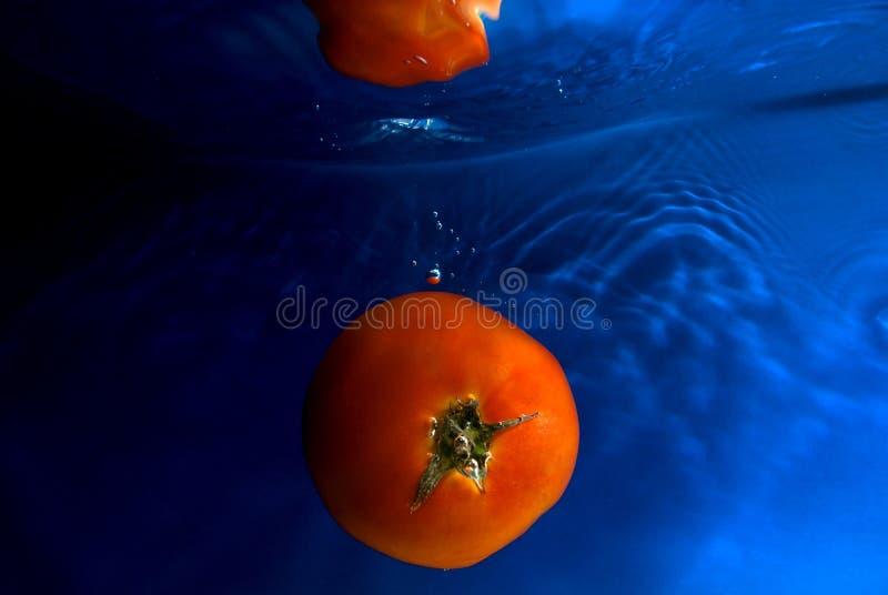 Download Swiming tomato 2 stock photo. Image of recepy, reflection - 2924588