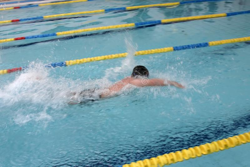 The swimmer royalty free stock photos