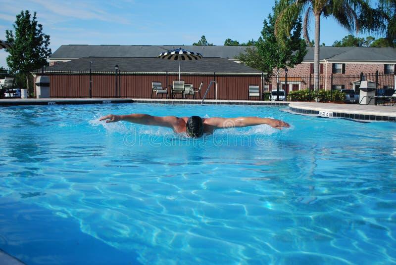 swimmer imagem de stock royalty free