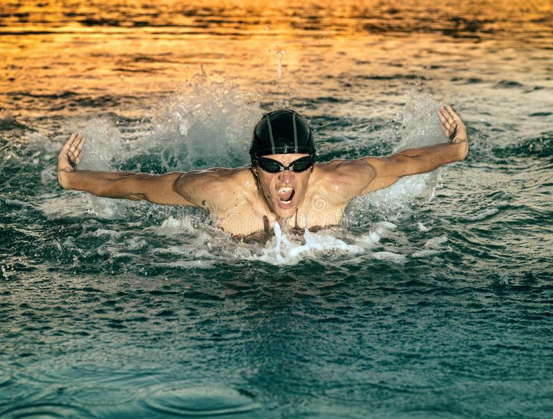 Swimmer breathing during swimming butterfly stock photos