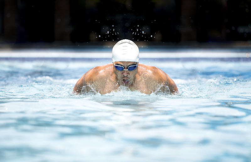 Swimmer royalty free stock photos