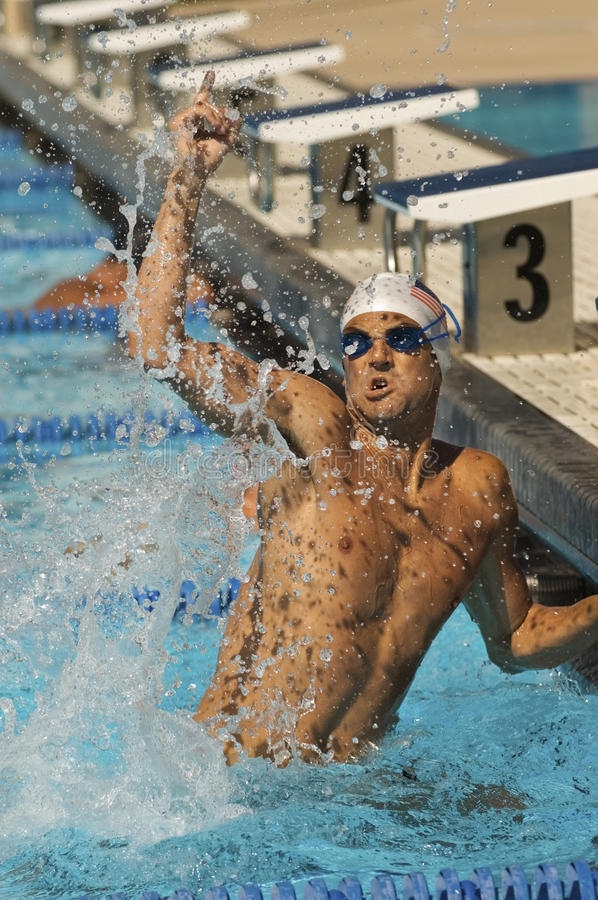 swimmer celebrating victory in pool stock photos image 30841953