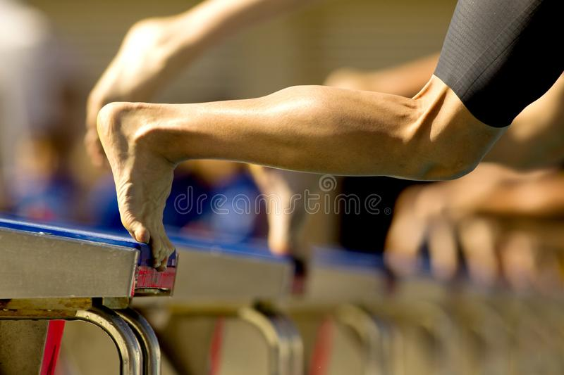 Swimmer jump into the water stock photography
