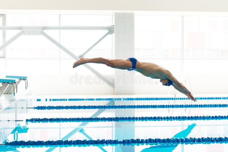 Swimmer Jumping From Starting Block I Stock Photo Image