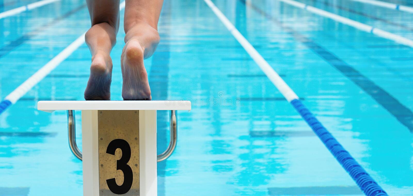 The swimmer jumps from the start block royalty free stock photo