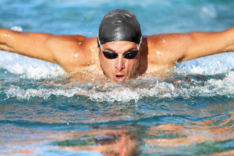 Swimmer man simmade butterfly strokes i poolen arkivbilder