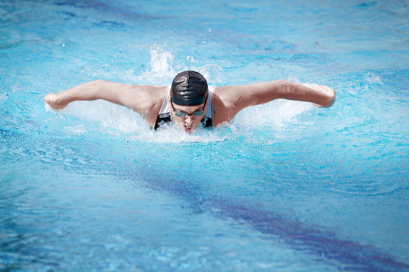 Download Swimmer  Performing The Butterfly Stroke,front Stock Image - Image: 19089461