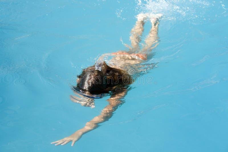 Swimmer in pool stock photo
