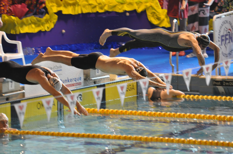 Swimmers diving into swimming pool royalty free stock photography