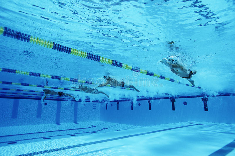 Swimmers Racing In Pool stock image