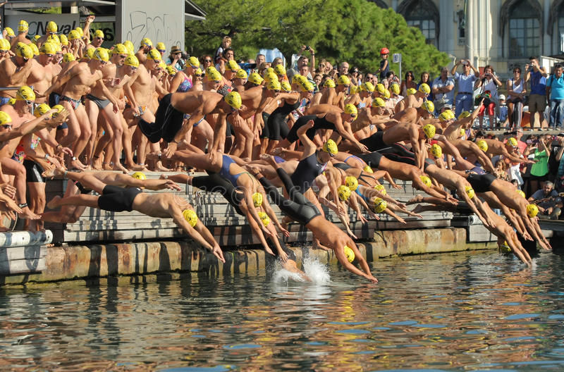 Swimmers on the start of open waters stock photos