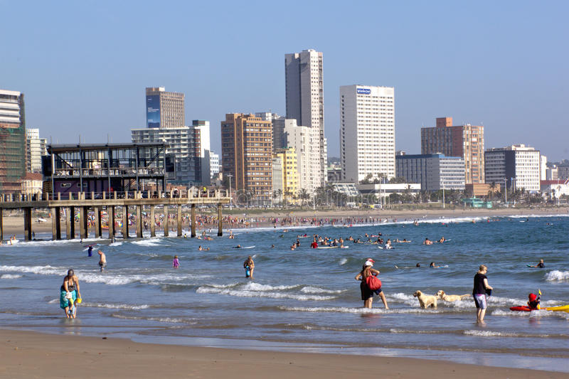 Swimmers and Sun Worshipers on Sunny Beach in Durban South Africa. DURBAN, SOUTH AFRICA - FEBRUARY 16, 2014 : Large crowd and dogs enjoy warm sunny weather on royalty free stock photos