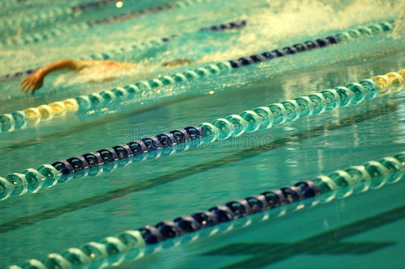 Download Swimming stock photo. Image of separator, water, pool - 1491646