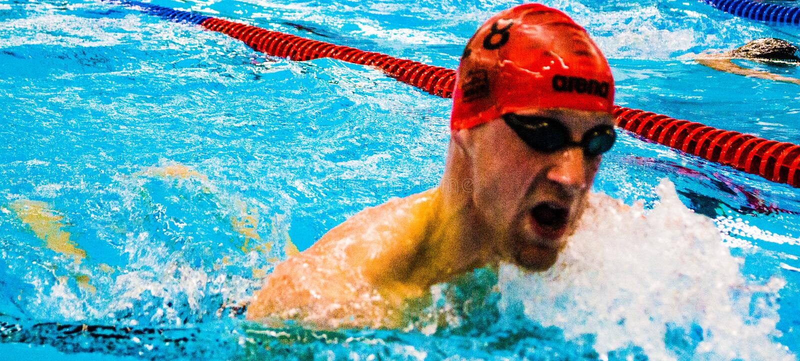 swimming immagine stock libera da diritti