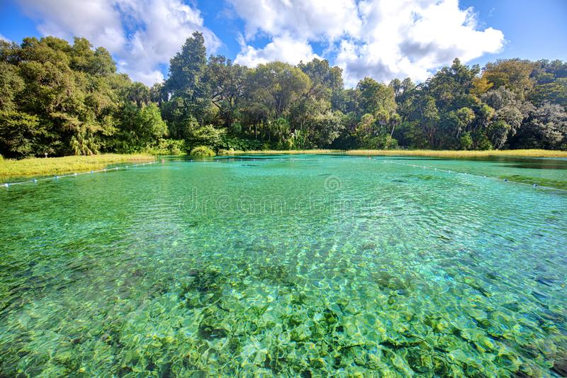 Swimming Area Of A Natural Springs. As seen at Rainbow Springs State Park in Dunellon, Florida stock image