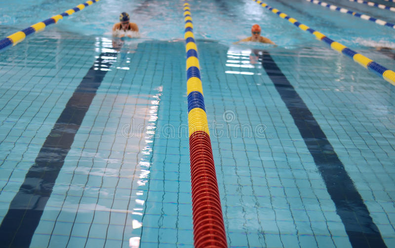 Download Swimming competition stock photo. Image of lanes, jumping - 11298914