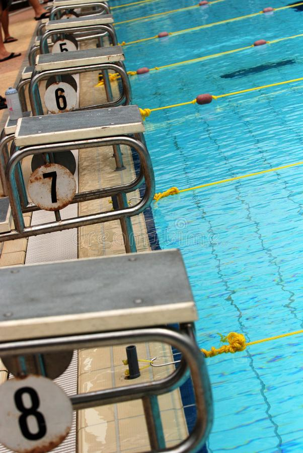 Download Swimming competition stock photo. Image of water, goggle - 2415788