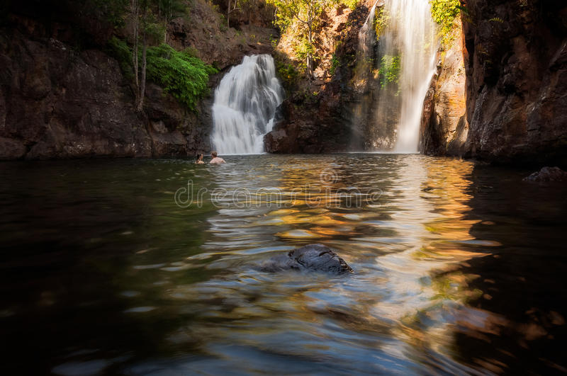 Swimming at Florence Falls in Litchfield NP, Australia royalty free stock photography