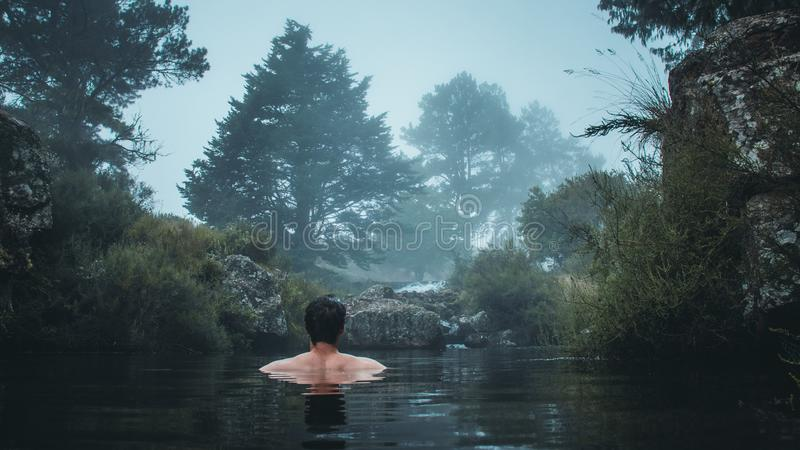 Swimming in a misty river royalty free stock photography