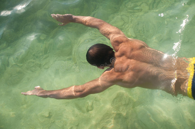 Download Swimming model stock image. Image of bodybuilder, young - 16410005