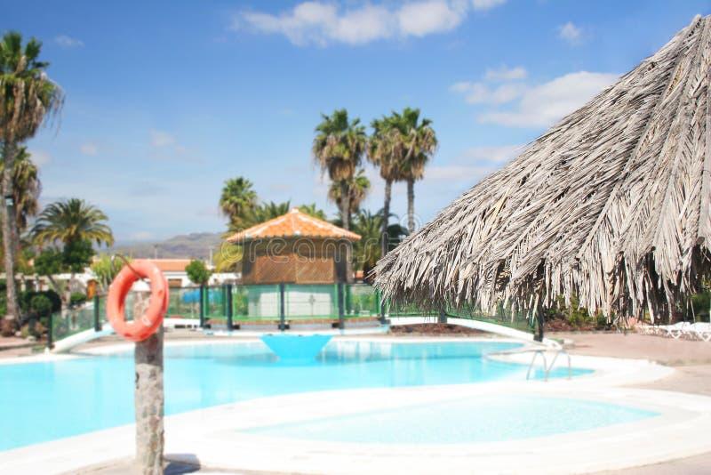 Download Swimming Pool stock image. Image of swim, architecture - 563395