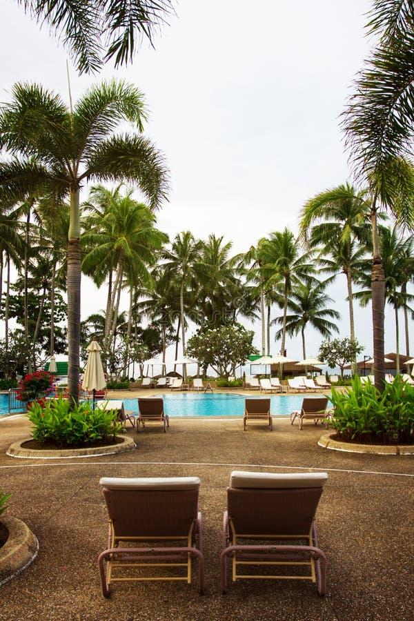 Swimming pool area, tropical resort