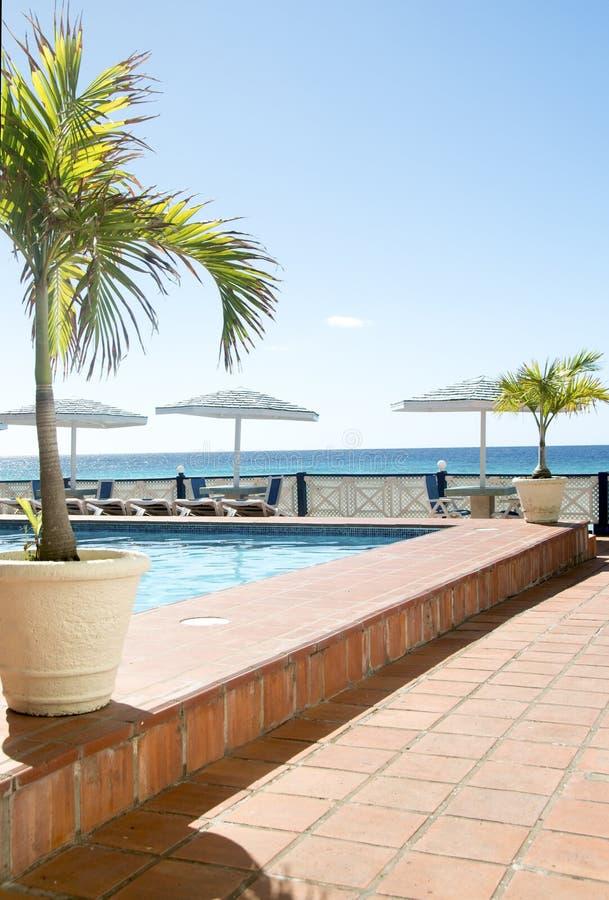 Download Swimming Pool Caribbean Sea Barbados Stock Image - Image of tropics, chairs: 28096769