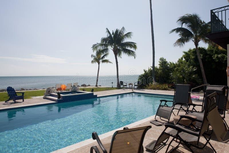 Swimming pool in the Florida stock photo